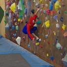 蜘蛛男の画像